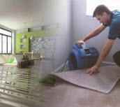 Desert Carpet Cleaning Las Vegas Nv Steam Carpet Upholstery Cleaners Residential