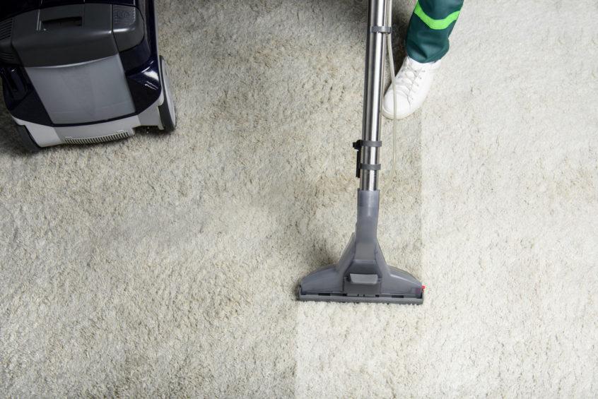 Professional Steam Carpet Cleaning Desert Carpet Cleaning Las Vegas Nv Steam